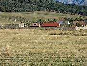 Cattle farm, Stepanavan