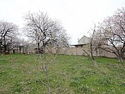 Առանձնատուն, Պտղնի