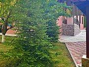 Առանձնատուն, Իջևան, Տավուշ