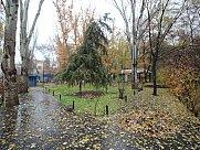 Սրճարան, Երևան, Մեծ Կենտրոն