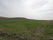 Հասարակական կառուցապատման հողատարածք, Զովունի