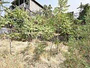 Բնակելի կառուցապատման հողատարածք, Մեծ Կենտրոն, Երևան