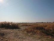 Public land, Ayntap