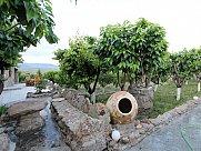 Universal premises, Teghenik
