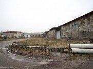 Cattle farm, Eghvard